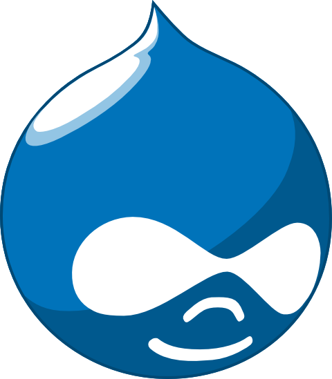 Drupal Website Development Company Delhi India
