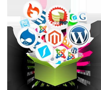Open Source Web Development in Delhi, Open Source Development ...