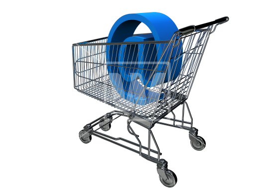Ecommerce Web Application Development Company in Delhi India, Shopping Software Development in Delhi India